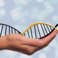 Activate and Heal Basic DNA 1: 4 Days Course Certification Program